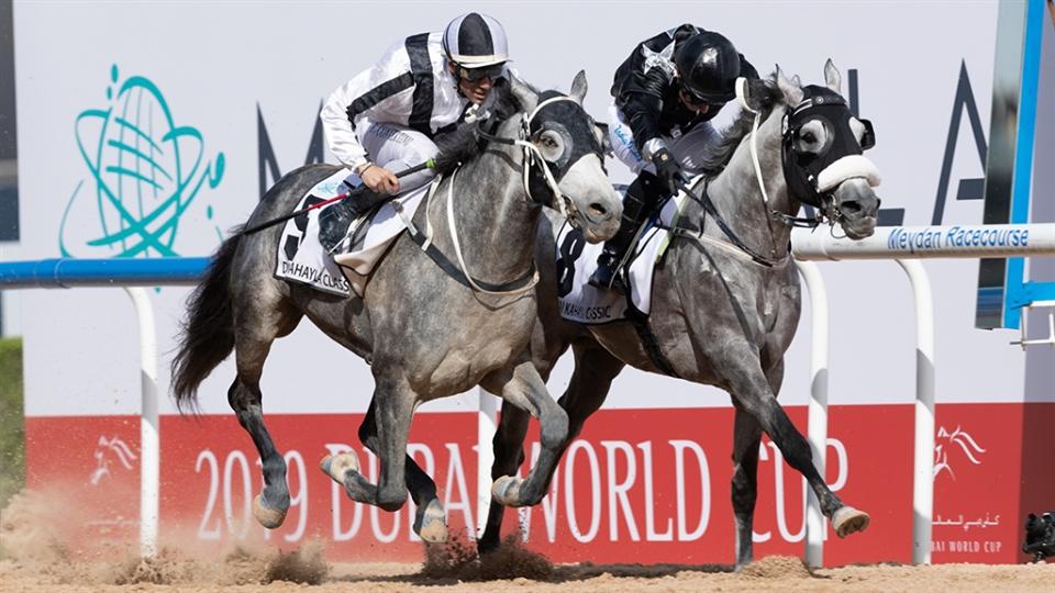 Koń zPartynic drugi podczas Dubai World Cup