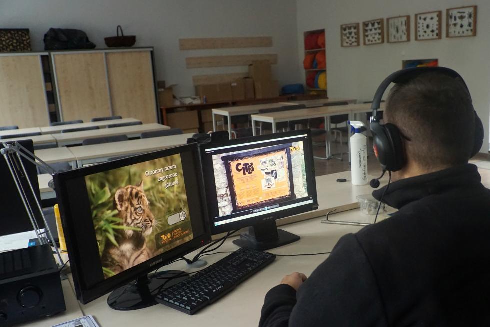 Nowa usługa ZOO Wrocław - zajęcia on-line dla szkół igrup zorganizowanych na terenie całego kraju